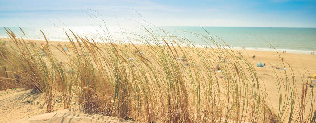 Najładniejsze plaże nad Bałtykiem