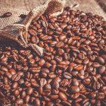 Arabica i Robusta – czym się różnią gatunki kaw?
