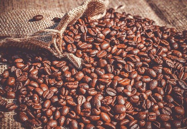 Arabica i Robusta - czym się różnią gatunki kaw?